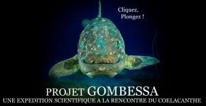 site web gombessa