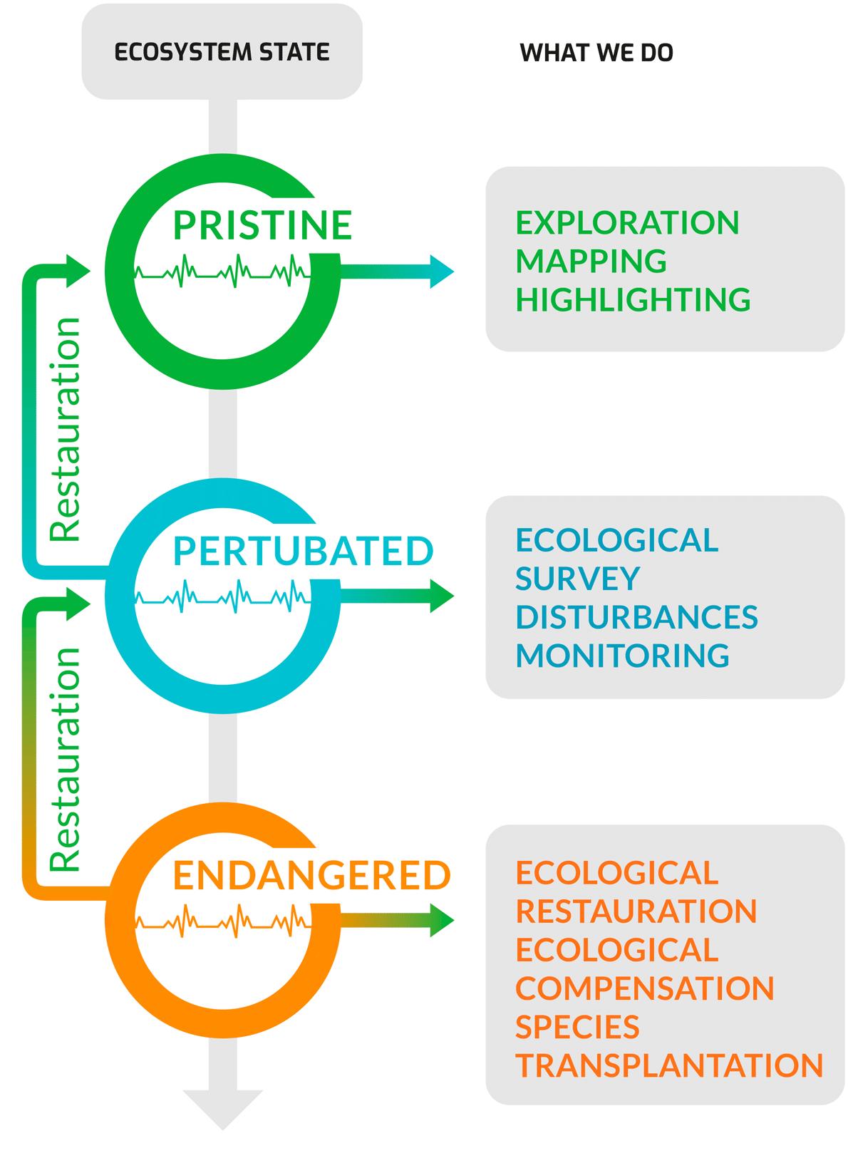 Diagramme Ecosysteme