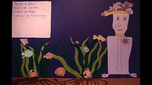 Film scientifique sur la posidonie réalisé avec des étudiants de l'université de Montpellier