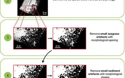 Cartographie automatique d'herbiers de posidonie par Photogrammétrie
