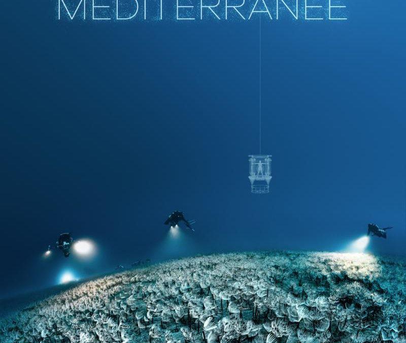 """Documentaire """"Planète Méditerranée"""" bientôt sur ARTE"""