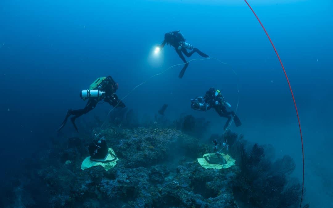 MEDTRIX : Édition spéciale  d'un cahier de surveillance sur l'expédition Gombessa 5 – Planète Méditerranée
