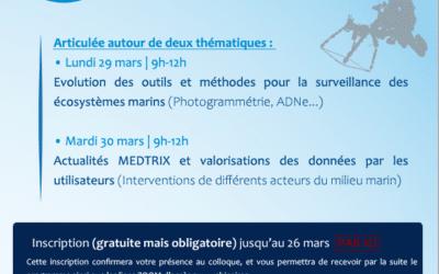 """[SAVE THE DATE] Colloque MEDTRIX : """"La Méditerranée une mer sous surveillance""""/ lundi 29 et mardi 30 mars 2021 (Webinaires)."""
