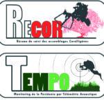 Recor_simplifié